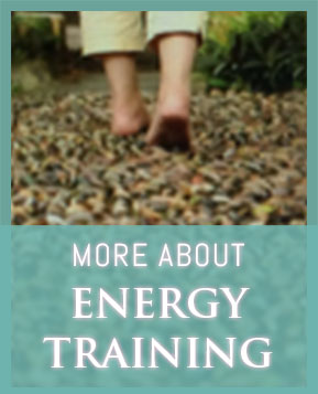 More about Energy Training